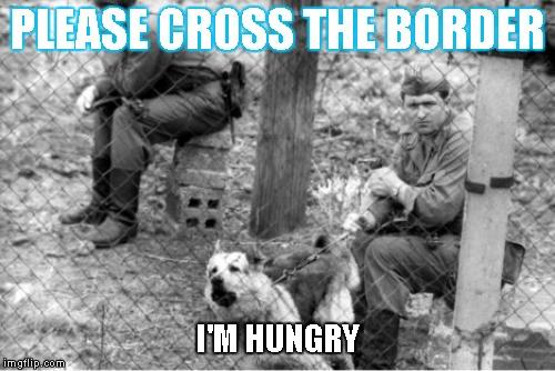 BORDER PATROL DOG | PLEASE CROSS THE BORDER I'M HUNGRY | image tagged in political meme | made w/ Imgflip meme maker