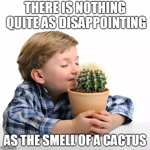 #rudeawakening | THERE IS NOTHING QUITE AS DISAPPOINTING AS THE SMELL OF A CACTUS | image tagged in cactus,offensive,first world problems,dank memes,depression,disappointment | made w/ Imgflip meme maker