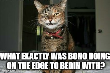 Evil Smile Cat | WHAT EXACTLY WAS BONO DOING ON THE EDGE TO BEGIN WITH? | image tagged in evil smile cat | made w/ Imgflip meme maker