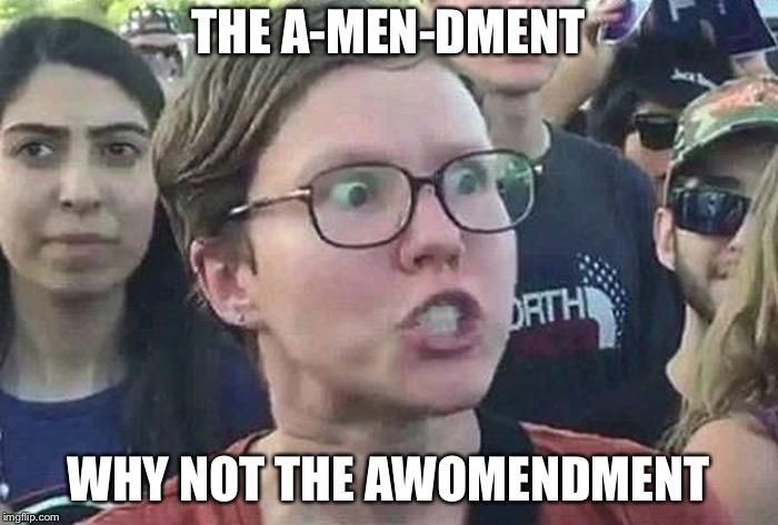 Stupid liberal scums | THE A-MEN-DMENT WHY NOT THE AWOMENDMENT | image tagged in triggered liberal,amendment,memes,women | made w/ Imgflip meme maker
