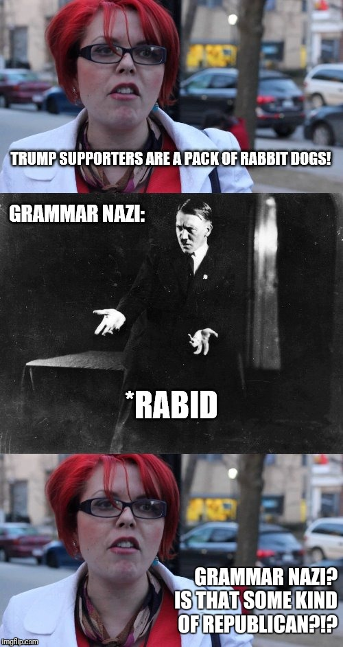 Grammar Nazi?!? | GRAMMAR NAZI?  IS THAT SOME KIND OF REPUBLICAN?!? | image tagged in memes,grammar nazi,republican | made w/ Imgflip meme maker