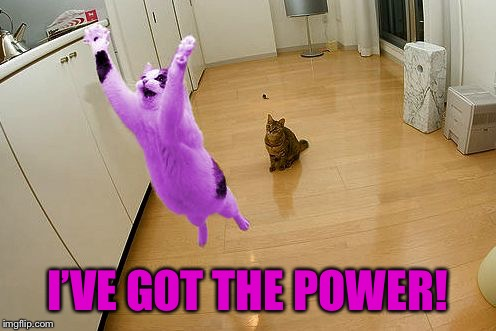 RayCat save the world | I'VE GOT THE POWER! | image tagged in raycat save the world | made w/ Imgflip meme maker