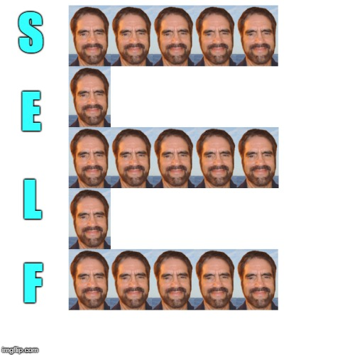 Figured out how to do a SELF E ! | S E L F | image tagged in selfies,memes,that's not how this works | made w/ Imgflip meme maker
