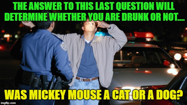 Drunks always fall for the trick questions | THE ANSWER TO THIS LAST QUESTION WILL DETERMINE WHETHER YOU ARE DRUNK OR NOT.... WAS MICKEY MOUSE A CAT OR A DOG? | image tagged in memes,funny,sobriety,mickey mouse | made w/ Imgflip meme maker