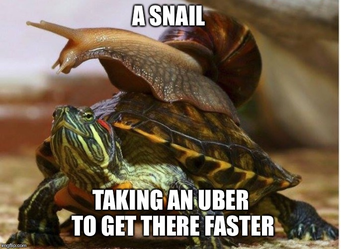A SNAIL TAKING AN UBER TO GET THERE FASTER | image tagged in memes,uber | made w/ Imgflip meme maker