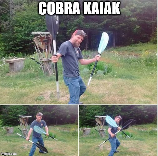 Cobra Kaiak | COBRA KAIAK | image tagged in cobra kai,karate kid,kayak | made w/ Imgflip meme maker