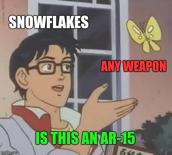 The Humanity! | SNOWFLAKES ANY WEAPON IS THIS AN AR-15 | image tagged in memes,is this a pigeon,snowflakes,ar15,clueless | made w/ Imgflip meme maker