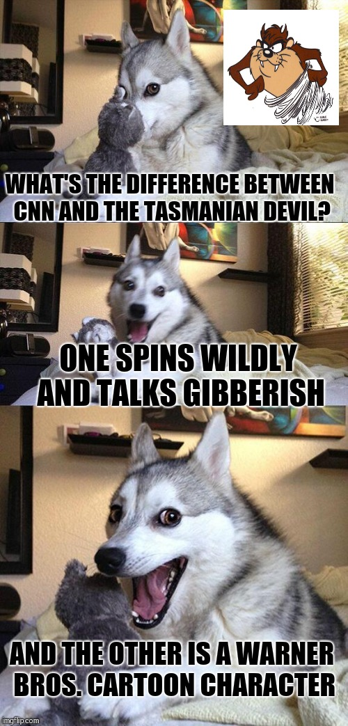 Bad Pun Dog Meme | WHAT'S THE DIFFERENCE BETWEEN CNN AND THE TASMANIAN DEVIL? ONE SPINS WILDLY AND TALKS GIBBERISH AND THE OTHER IS A WARNER BROS. CARTOON CHAR | image tagged in memes,bad pun dog | made w/ Imgflip meme maker