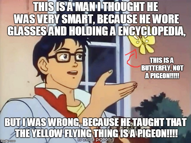 The worst man I ever seen | THIS IS A MAN I THOUGHT HE WAS VERY SMART, BECAUSE HE WORE GLASSES AND HOLDING A ENCYCLOPEDIA, BUT I WAS WRONG, BECAUSE HE TAUGHT THAT THE Y | image tagged in anime butterfly meme,memes | made w/ Imgflip meme maker