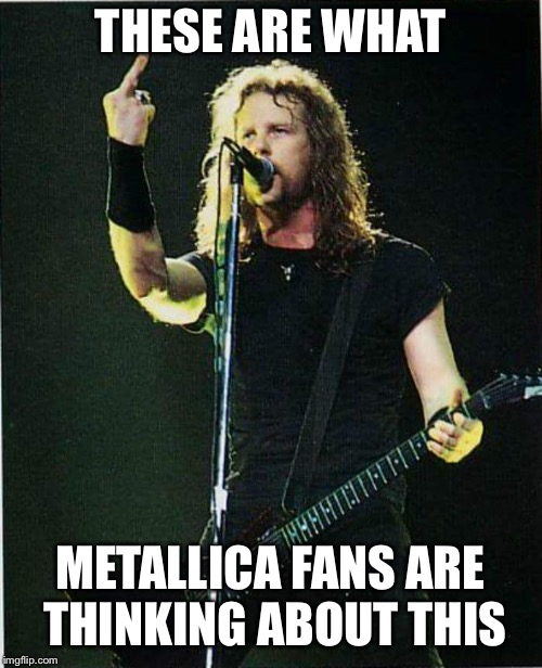 THESE ARE WHAT METALLICA FANS ARE THINKING ABOUT THIS | image tagged in metallica | made w/ Imgflip meme maker
