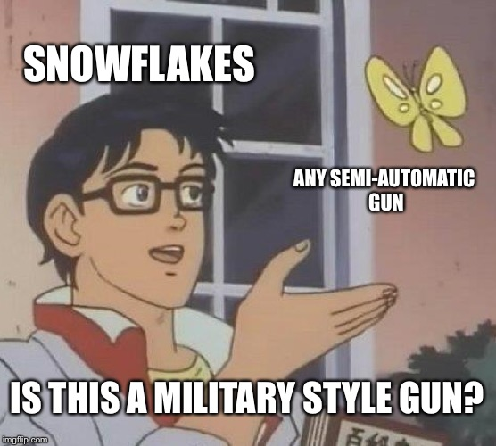 Is This A Pigeon Meme | SNOWFLAKES ANY SEMI-AUTOMATIC GUN IS THIS A MILITARY STYLE GUN? | image tagged in memes,is this a pigeon | made w/ Imgflip meme maker