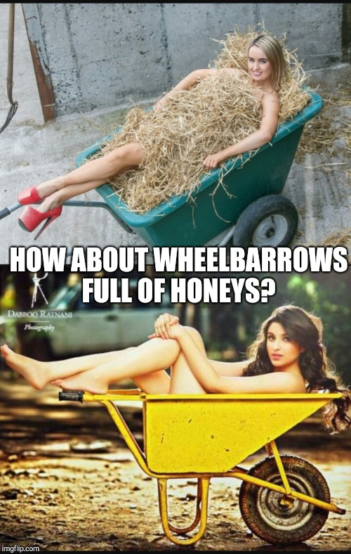 HOW ABOUT WHEELBARROWS FULL OF HONEYS? | made w/ Imgflip meme maker