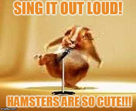 Hamster Weekend July 6-8 a bachmemeguy2, 1forpeace, and Shen_Hiroku_Nagato event | SING IT OUT LOUD! HAMSTERS ARE SO CUTE!!! | image tagged in memes,hamster weekend,sing,hamster,are,so cute | made w/ Imgflip meme maker
