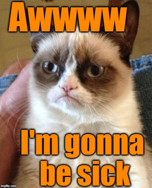 Grumpy Cat Meme | Awwww I'm gonna be sick | image tagged in memes,grumpy cat | made w/ Imgflip meme maker