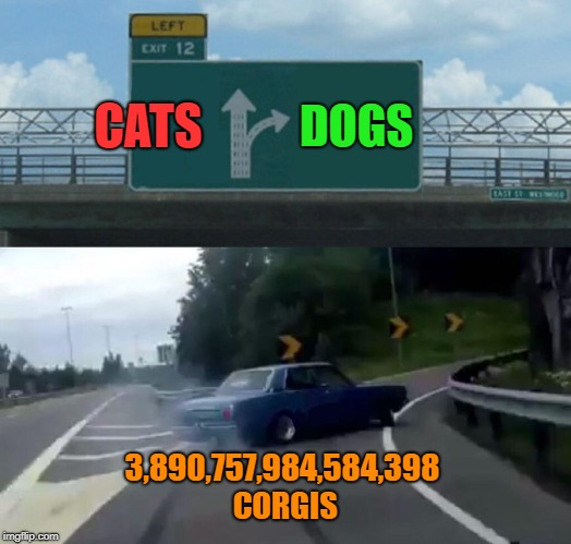 How can there be so many corgis in one car? XD | CATS DOGS 3,890,757,984,584,398 CORGIS | image tagged in memes,left exit 12 off ramp,corgi | made w/ Imgflip meme maker