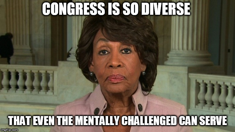 Challenged Waters | CONGRESS IS SO DIVERSE THAT EVEN THE MENTALLY CHALLENGED CAN SERVE | image tagged in maxine waters,mental illness | made w/ Imgflip meme maker
