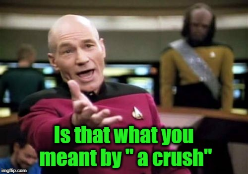 "Picard Wtf Meme | Is that what you meant by "" a crush"" 