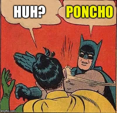 Batman Slapping Robin Meme | HUH? PONCHO | image tagged in memes,batman slapping robin | made w/ Imgflip meme maker