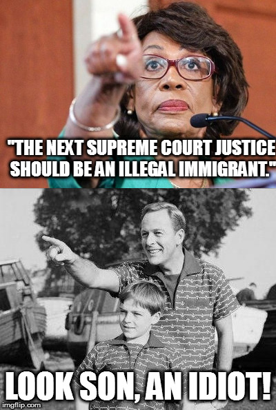 "Wow... | ""THE NEXT SUPREME COURT JUSTICE SHOULD BE AN ILLEGAL IMMIGRANT."" LOOK SON, AN IDIOT! 