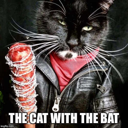 THE CAT WITH THE BAT | made w/ Imgflip meme maker