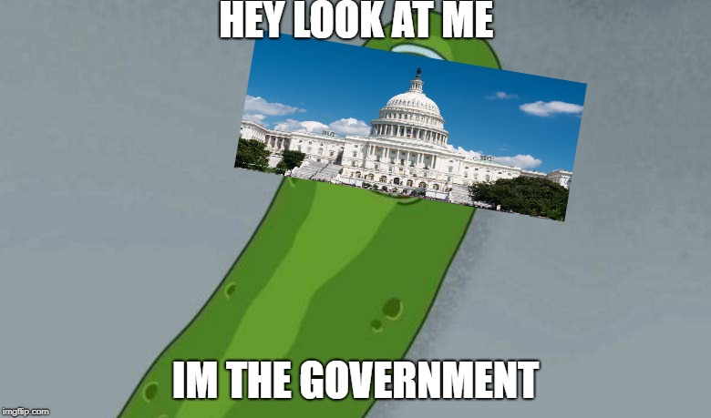 Pickle rick | HEY LOOK AT ME IM THE GOVERNMENT | image tagged in pickle rick | made w/ Imgflip meme maker