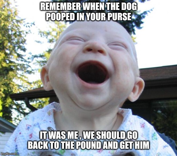 REMEMBER WHEN THE DOG POOPED IN YOUR PURSE IT WAS ME , WE SHOULD GO BACK TO THE POUND AND GET HIM | image tagged in happy baby | made w/ Imgflip meme maker