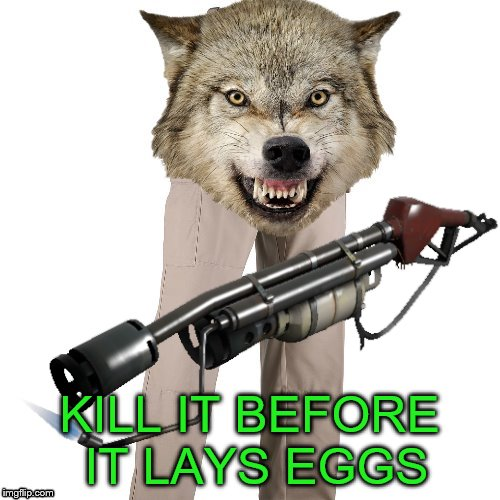 KILL IT BEFORE IT LAYS EGGS | made w/ Imgflip meme maker