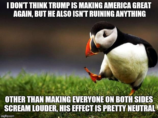 Unpopular Opinion Puffin Meme | I DON'T THINK TRUMP IS MAKING AMERICA GREAT AGAIN, BUT HE ALSO ISN'T RUINING ANYTHING OTHER THAN MAKING EVERYONE ON BOTH SIDES SCREAM LOUDER | image tagged in memes,unpopular opinion puffin | made w/ Imgflip meme maker