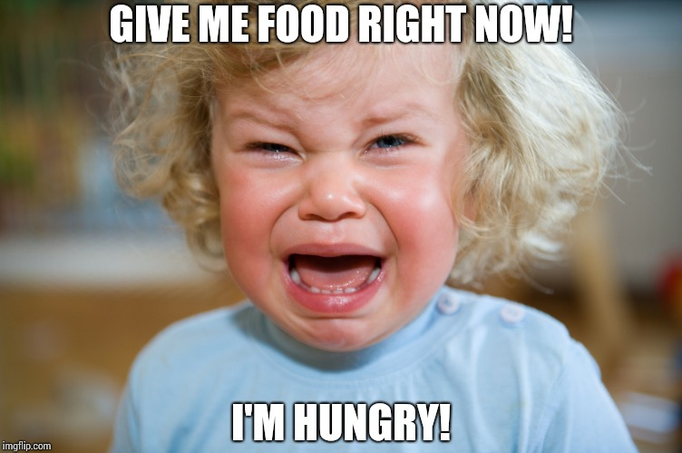 People are dying of starvation. #StopHungerNow | GIVE ME FOOD RIGHT NOW! I'M HUNGRY! | image tagged in temper-tantrum,tantrum,stop hunger,food | made w/ Imgflip meme maker