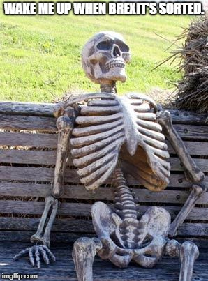 Waiting Skeleton Meme | WAKE ME UP WHEN BREXIT'S SORTED. | image tagged in memes,waiting skeleton | made w/ Imgflip meme maker