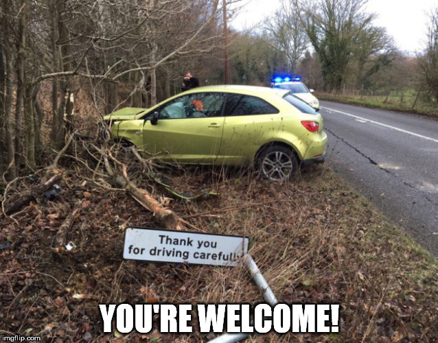 Drive carefully | YOU'RE WELCOME! | image tagged in driving,bad driver,be careful,you're welcome | made w/ Imgflip meme maker