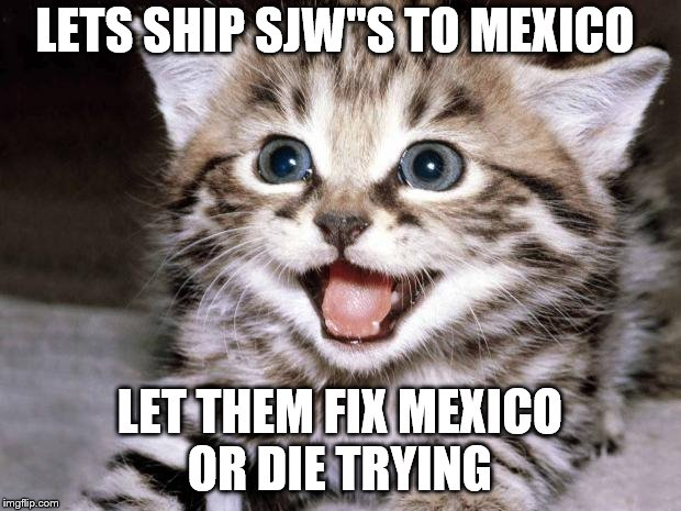 "Uber Cute Cat | LETS SHIP SJW""S TO MEXICO LET THEM FIX MEXICO OR DIE TRYING 
