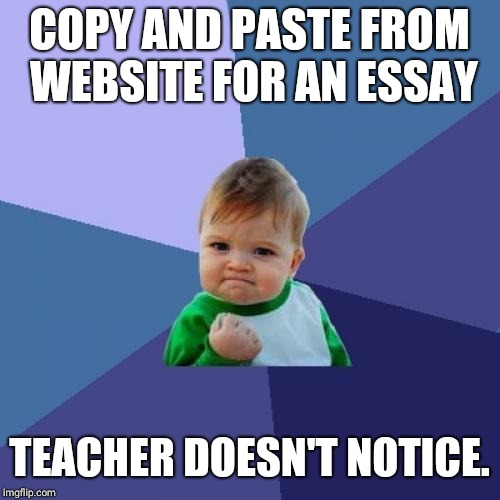 Success Kid Meme | COPY AND PASTE FROM WEBSITE FOR AN ESSAY TEACHER DOESN'T NOTICE. | image tagged in memes,success kid | made w/ Imgflip meme maker