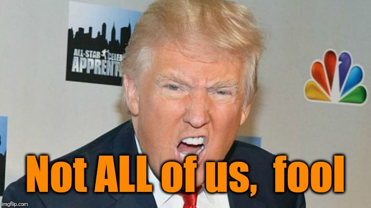 trump mad | Not ALL of us,  fool | image tagged in trump mad | made w/ Imgflip meme maker