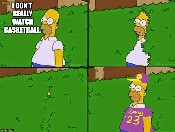 Angelenos be like: | I DON'T REALLY WATCH BASKETBALL. | image tagged in memes,basketball | made w/ Imgflip meme maker