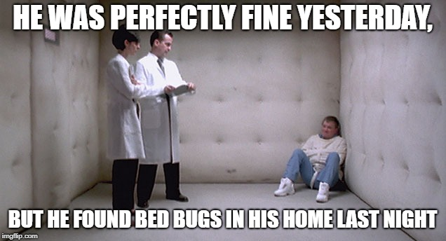 Bed Bugs Drive Me Crazy! | HE WAS PERFECTLY FINE YESTERDAY, BUT HE FOUND BED BUGS IN HIS HOME LAST NIGHT | image tagged in bedbugs,crazy,doctors,straight jacket,straightjacket,insanity | made w/ Imgflip meme maker