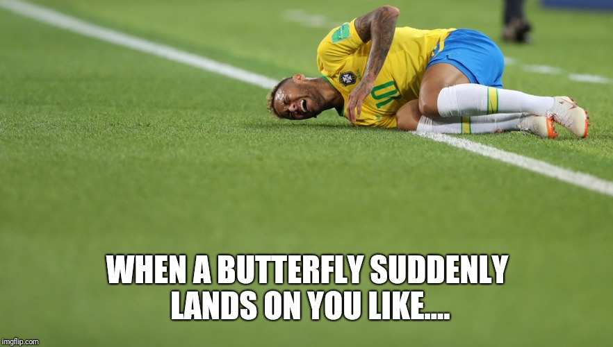 Neymar, Brazil, acting, should get an Oscar for that | WHEN A BUTTERFLY SUDDENLY LANDS ON YOU LIKE.... | image tagged in neymar,brazil,acting,should get an oscar for that | made w/ Imgflip meme maker
