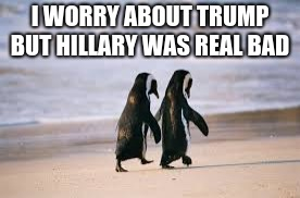 elections | I WORRY ABOUT TRUMP BUT HILLARY WAS REAL BAD | image tagged in animal talk,trump,hillary | made w/ Imgflip meme maker