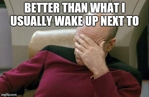 Captain Picard Facepalm Meme | BETTER THAN WHAT I USUALLY WAKE UP NEXT TO | image tagged in memes,captain picard facepalm | made w/ Imgflip meme maker