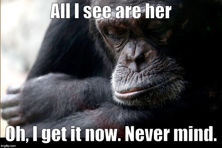 Koko | All I see are her Oh, I get it now. Never mind. | image tagged in koko | made w/ Imgflip meme maker