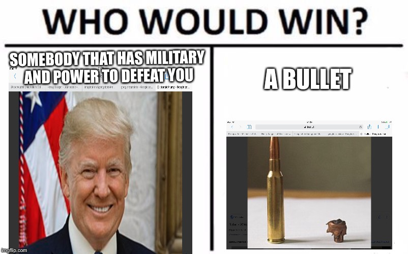 Who Would Win? Meme | SOMEBODY THAT HAS MILITARY AND POWER TO DEFEAT YOU A BULLET | image tagged in memes,who would win | made w/ Imgflip meme maker