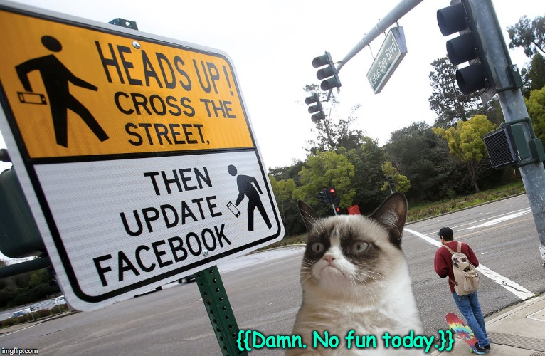 Grumpy Gets No Fun Today. | {{Damn. No fun today.}} | image tagged in road signs | made w/ Imgflip meme maker