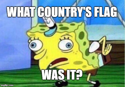 Mocking Spongebob Meme | WHAT COUNTRY'S FLAG WAS IT? | image tagged in memes,mocking spongebob | made w/ Imgflip meme maker