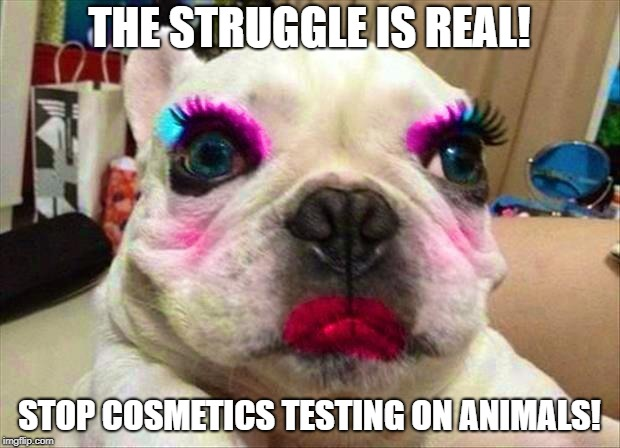 THE STRUGGLE IS REAL! STOP COSMETICS TESTING ON ANIMALS! | image tagged in the struggle is real,struggle | made w/ Imgflip meme maker