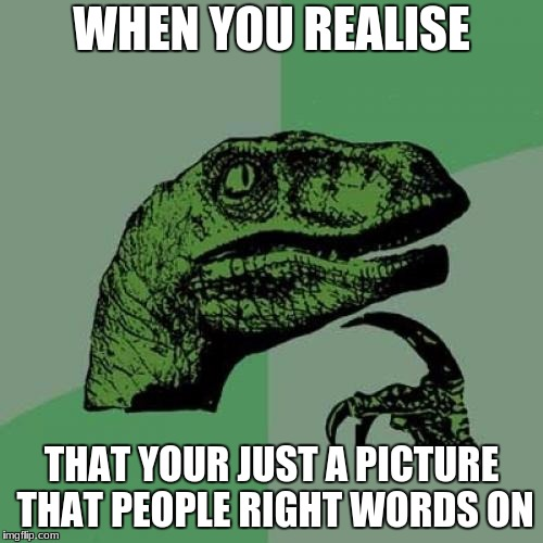 Philosoraptor Meme | WHEN YOU REALISE THAT YOUR JUST A PICTURE THAT PEOPLE RIGHT WORDS ON | image tagged in memes,philosoraptor | made w/ Imgflip meme maker