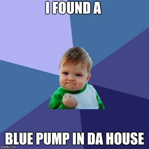 Success Kid | I FOUND A BLUE PUMP IN DA HOUSE | image tagged in memes,success kid | made w/ Imgflip meme maker