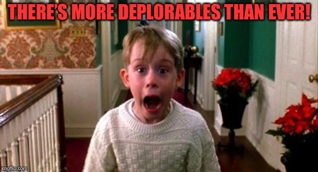 Kevin Home Alone | THERE'S MORE DEPLORABLES THAN EVER! | image tagged in kevin home alone | made w/ Imgflip meme maker