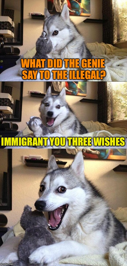 Holy frijoles! | WHAT DID THE GENIE SAY TO THE ILLEGAL? IMMIGRANT YOU THREE WISHES | image tagged in memes,bad pun dog,funny,ugh | made w/ Imgflip meme maker