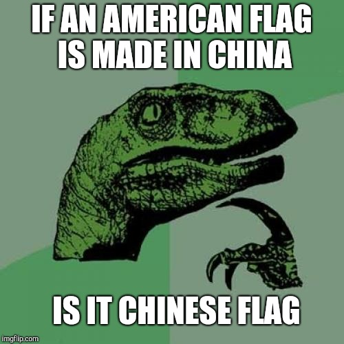 Philosoraptor Meme | IF AN AMERICAN FLAG IS MADE IN CHINA IS IT CHINESE FLAG | image tagged in memes,philosoraptor | made w/ Imgflip meme maker