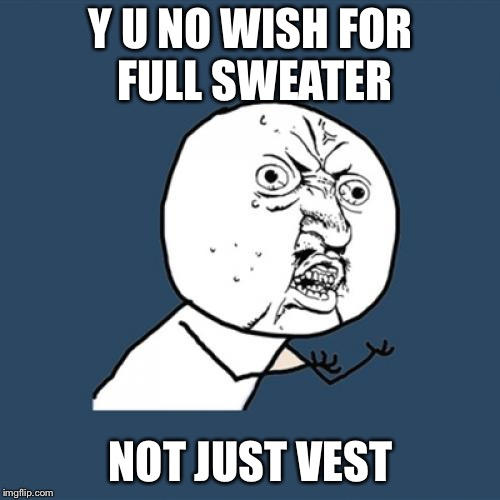 Y U No Meme | Y U NO WISH FOR FULL SWEATER NOT JUST VEST | image tagged in memes,y u no | made w/ Imgflip meme maker